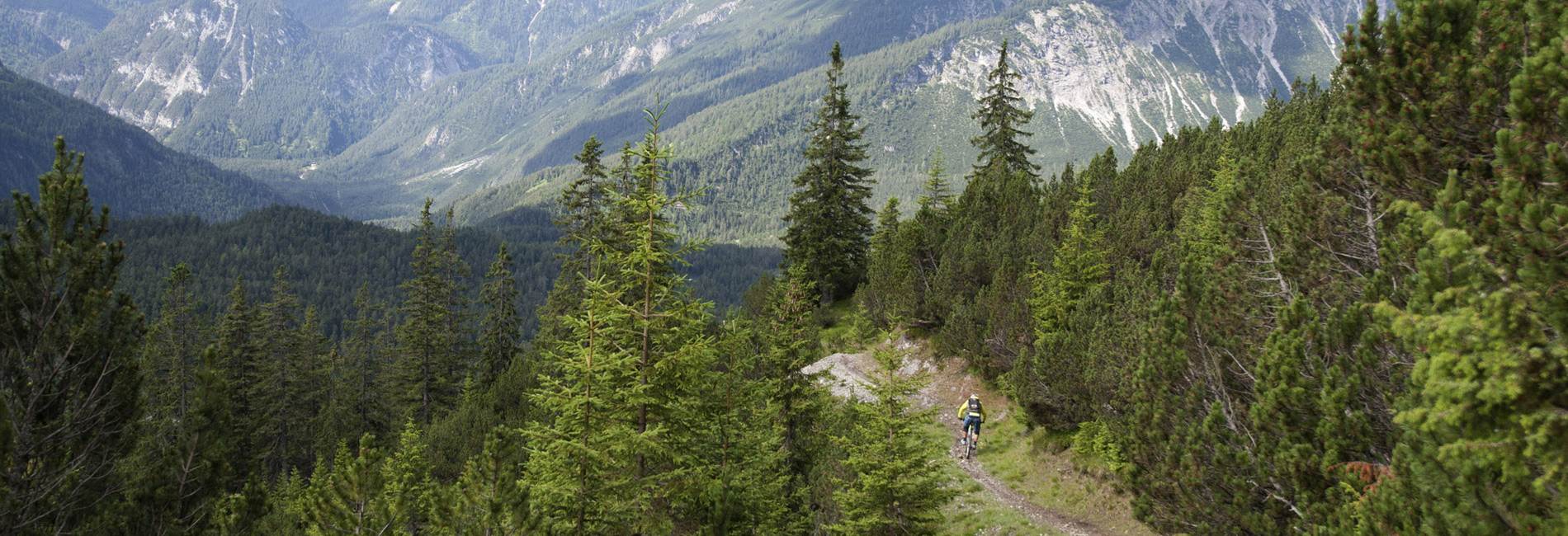 Endlose Trails im Bikepark Lermoos in Tirol - copyright Tirol Werbung